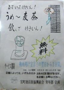 140728seinenbu-mugicha