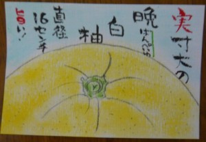 150214baipeiyu-e