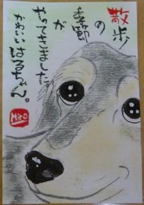 160325y-haru